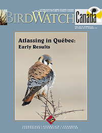 Couverture BirdWatch Canada